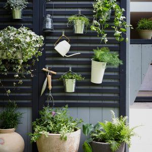 Wall Trellis with Plants and Accessories